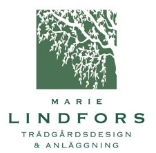 Marie Lindfors